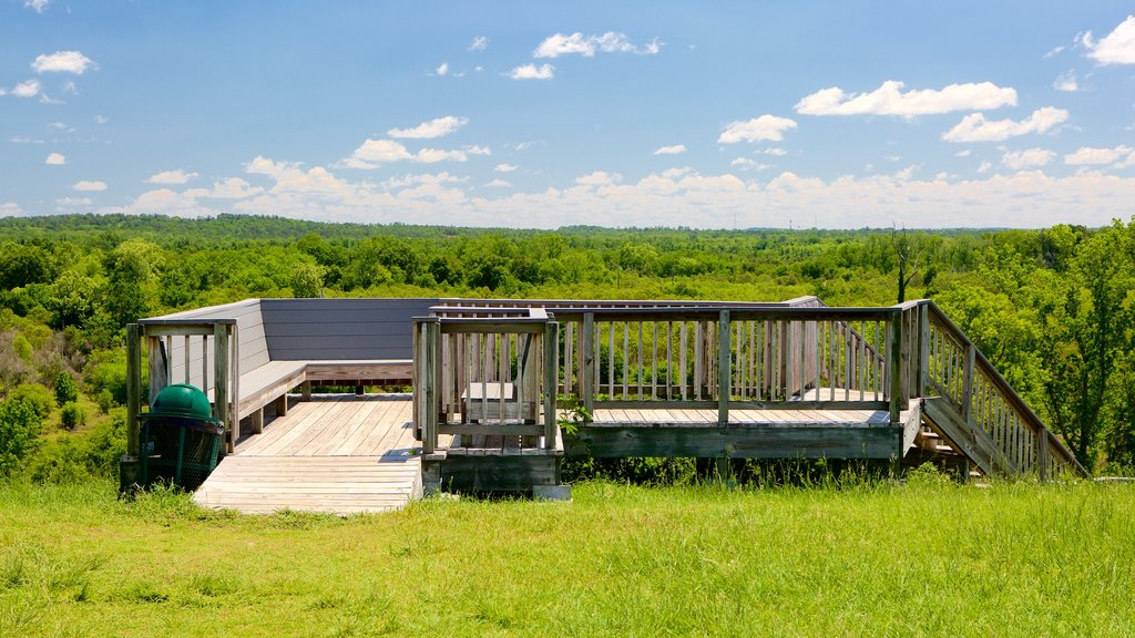 Ocmulgee National Monument which includes tranquil scenes and views
