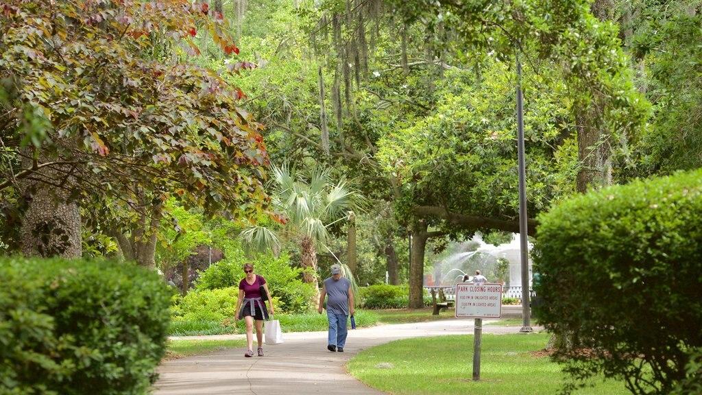 Forsyth Park ofreciendo un parque y también un pequeño grupo de personas