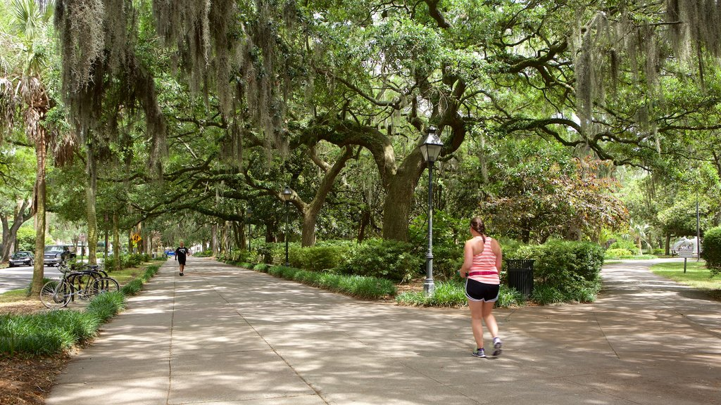 Forsyth Park showing a park