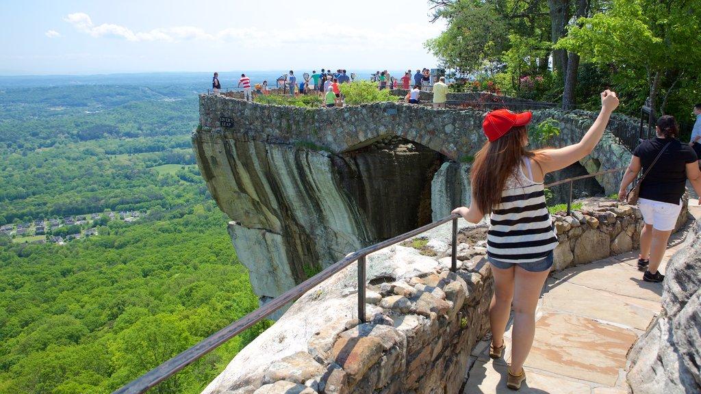 Lookout Mountain mostrando vistas y escenas tranquilas y también un gran grupo de personas