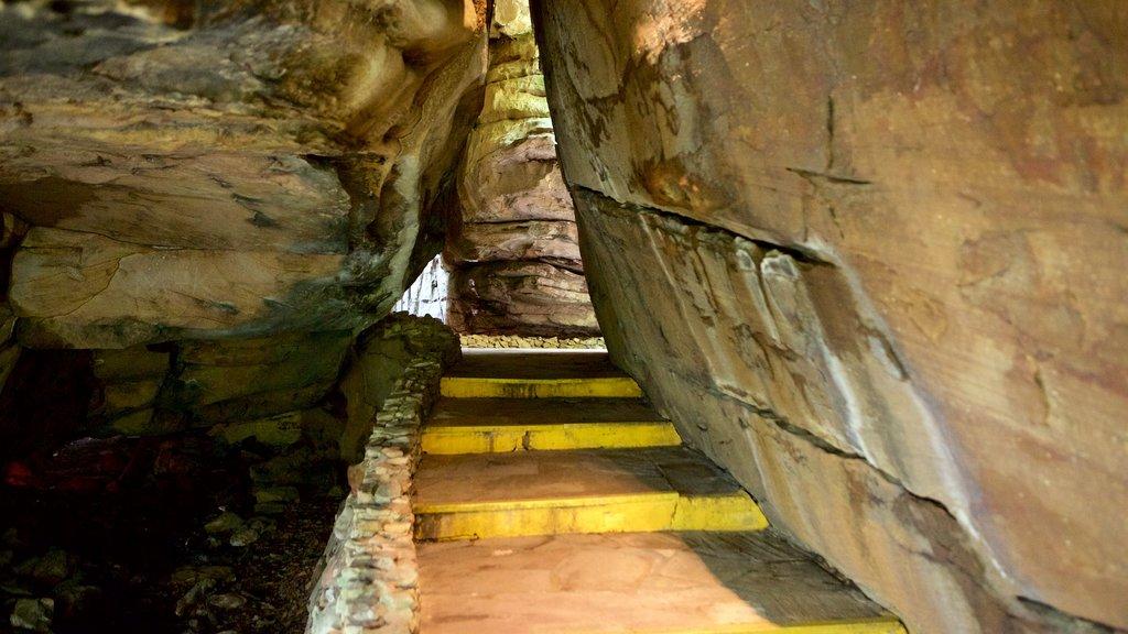 Lookout Mountain mostrando cuevas