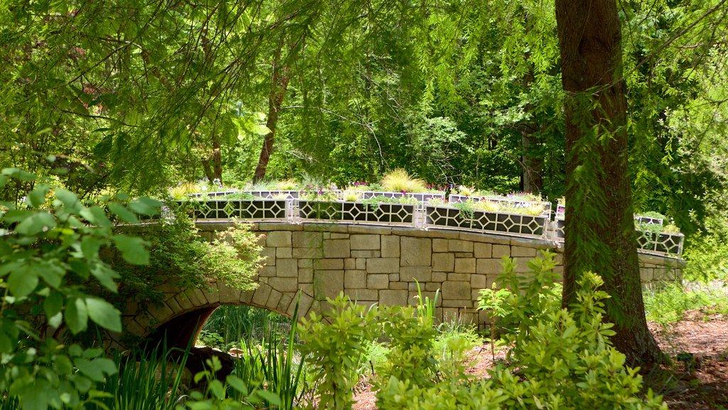 State Botanical Garden of Georgia featuring a bridge
