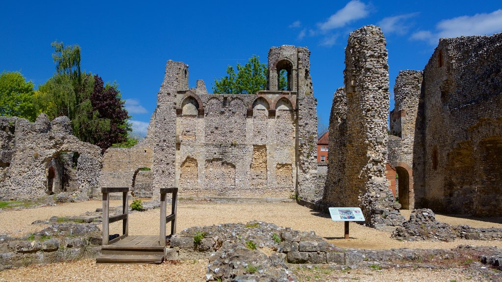 Wolvesey Castle which includes building ruins and heritage architecture