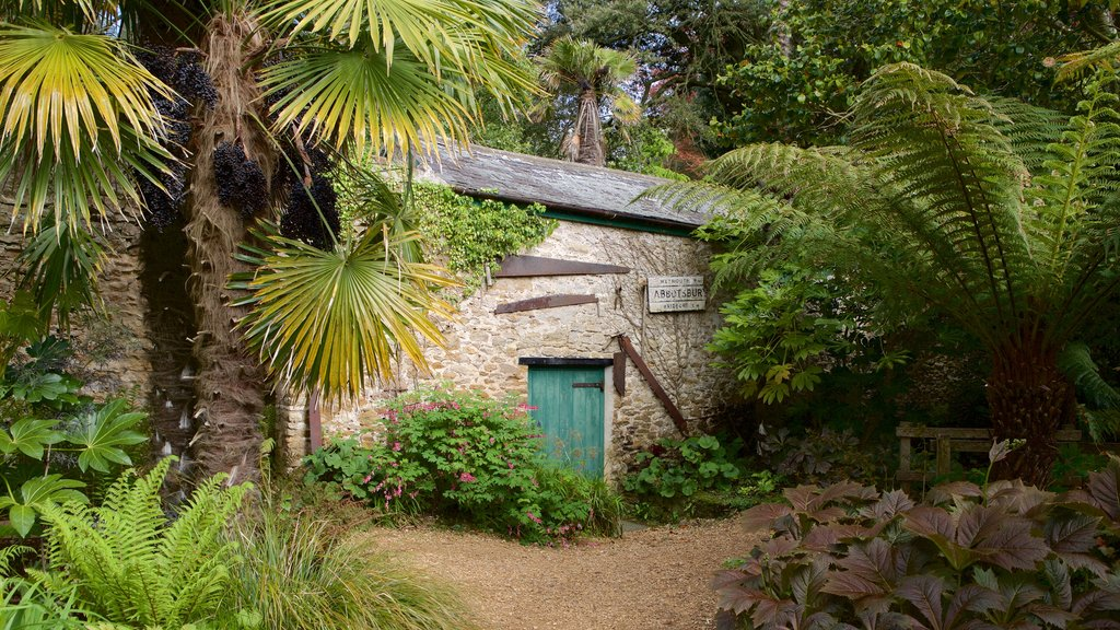 Abbotsbury Sub-Tropical Gardens which includes forests