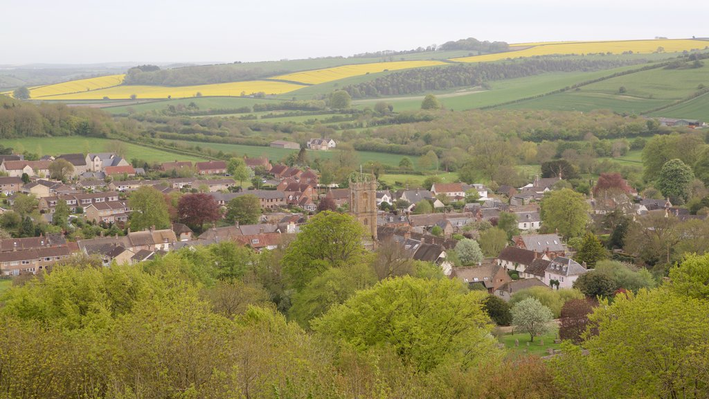 Cerne Abbas Giant showing tranquil scenes and a small town or village
