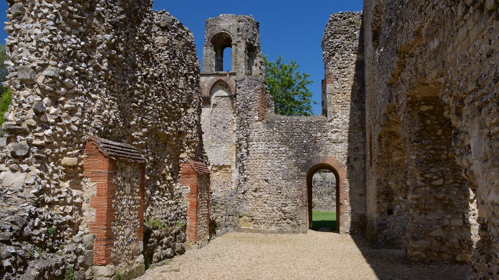 Wolvesey Castle which includes heritage elements, chateau or palace and building ruins