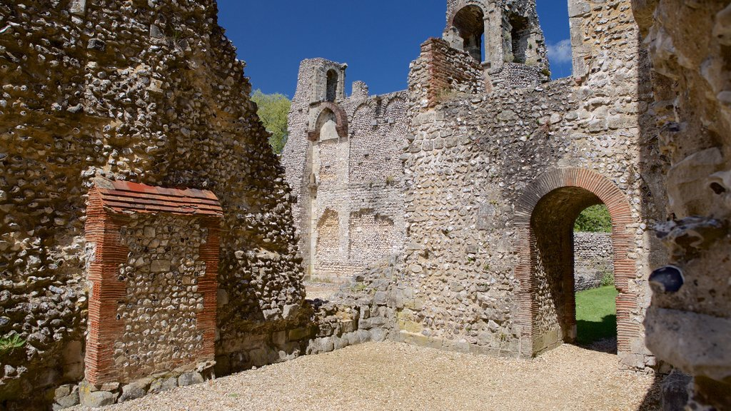 Wolvesey Castle featuring heritage elements, building ruins and a castle