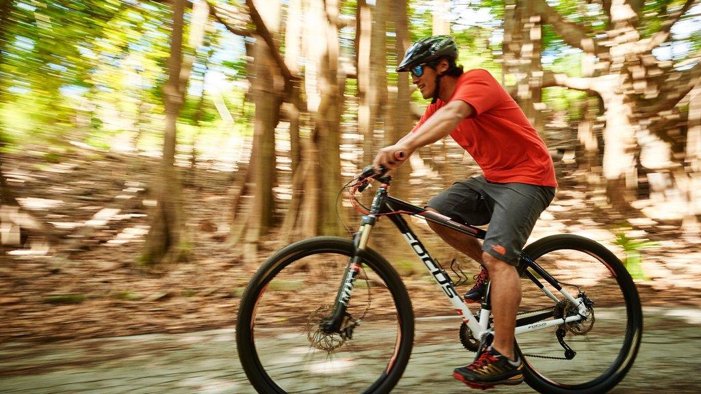 Bermudas mostrando ciclismo de montaña y también un hombre