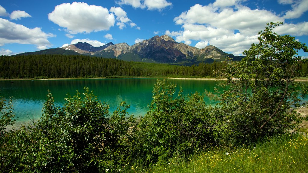 Patricia Lake which includes mountains and a lake or waterhole