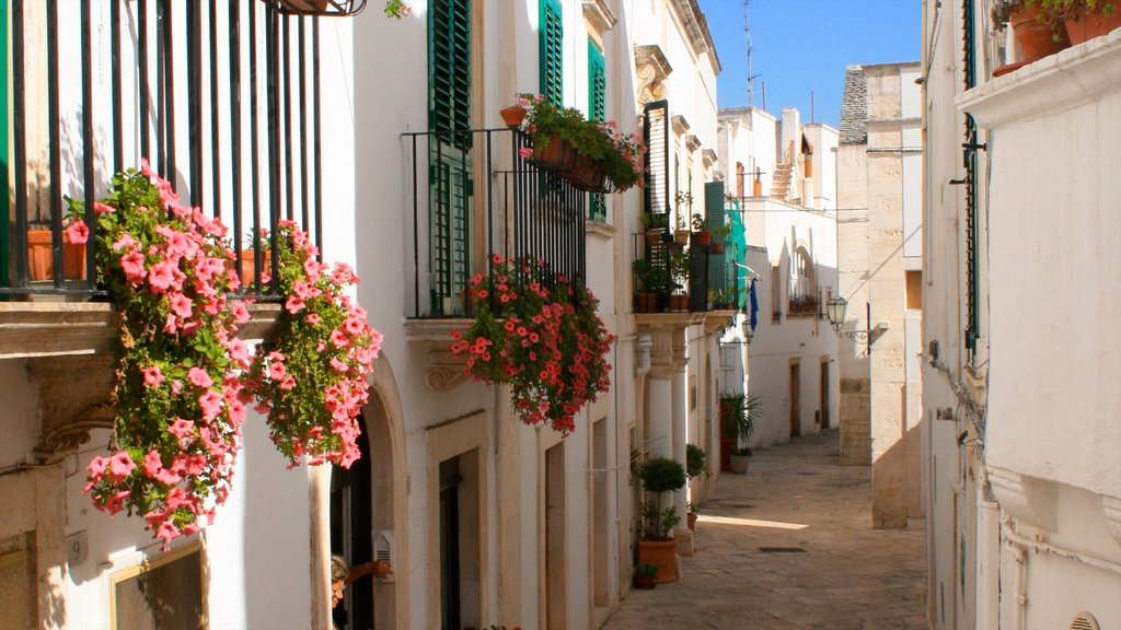 Otranto showing flowers and street scenes