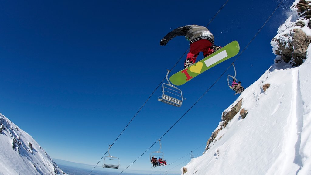 Mount Hutt Skifield showing a gondola, snow and snow boarding
