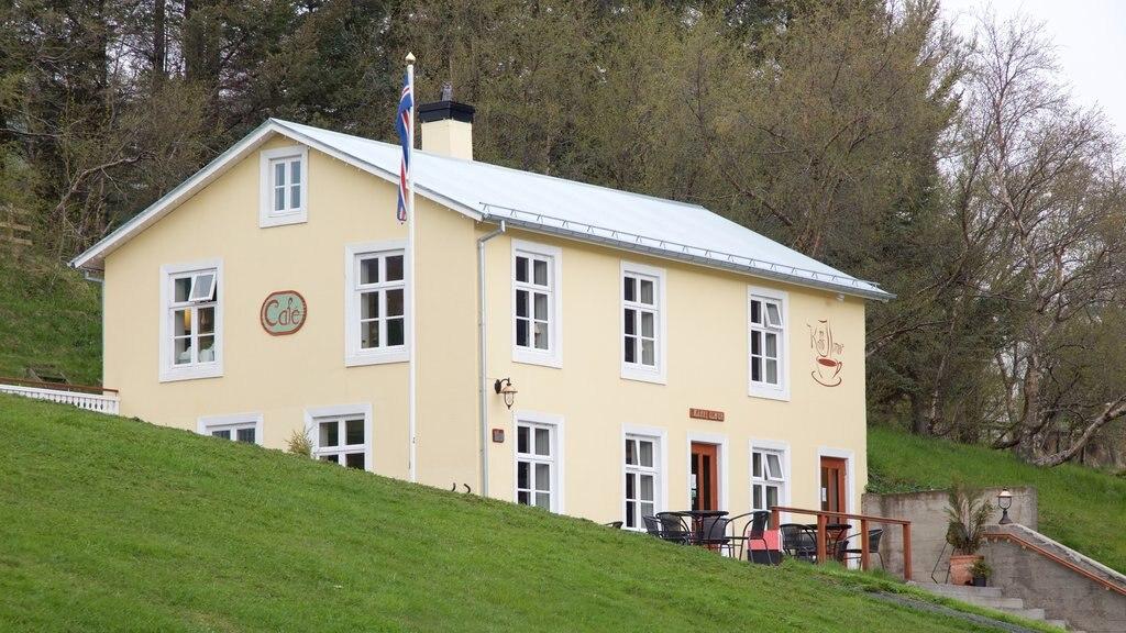 Akureyri showing a house