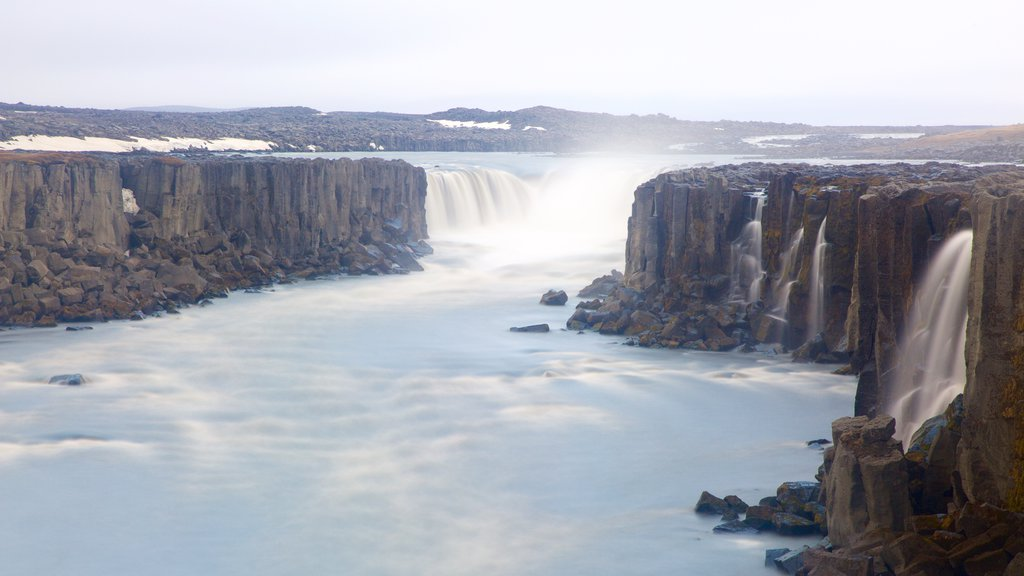 Selfoss which includes a waterfall, a river or creek and a gorge or canyon