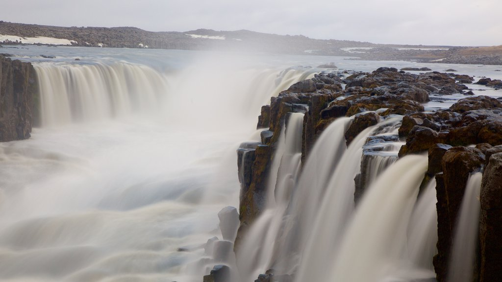 Selfoss which includes rapids, a gorge or canyon and a cascade