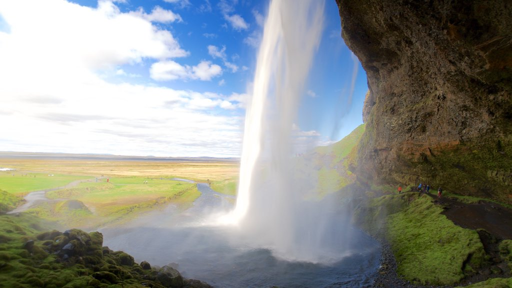 Seljalandsfoss which includes a waterfall