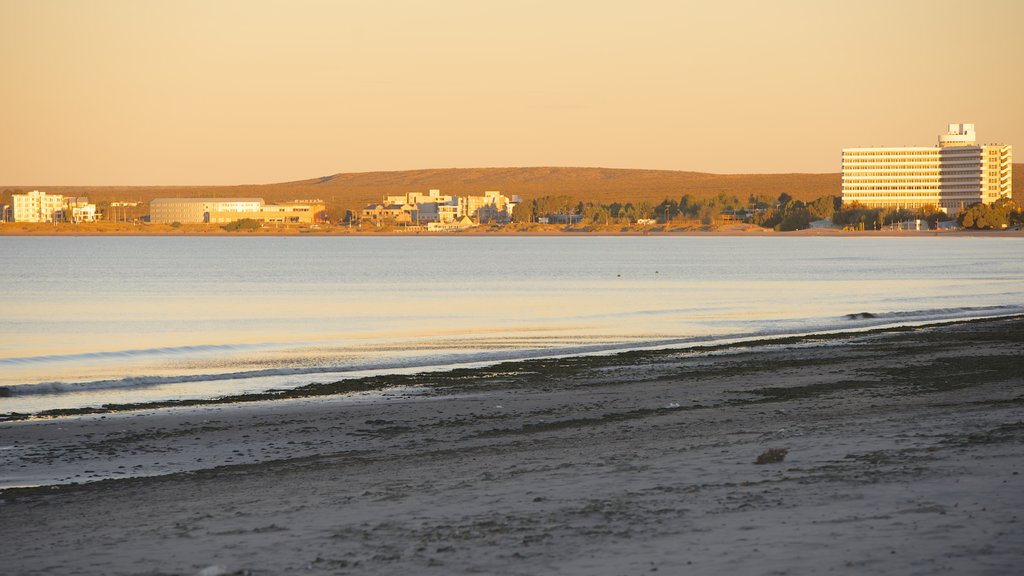 Puerto Madryn Beach which includes a sunset, a sandy beach and general coastal views