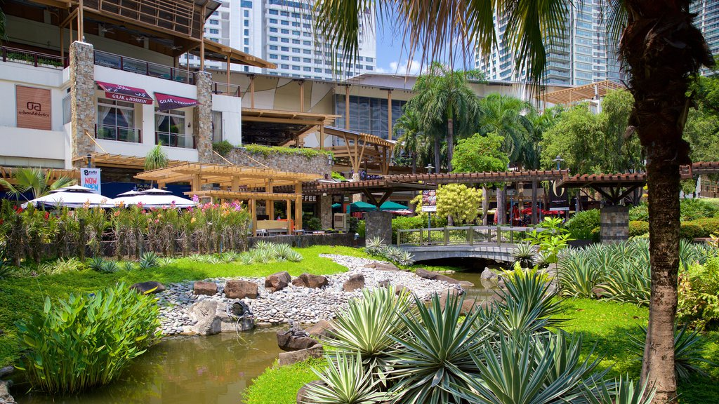 Makati showing a pond and a garden