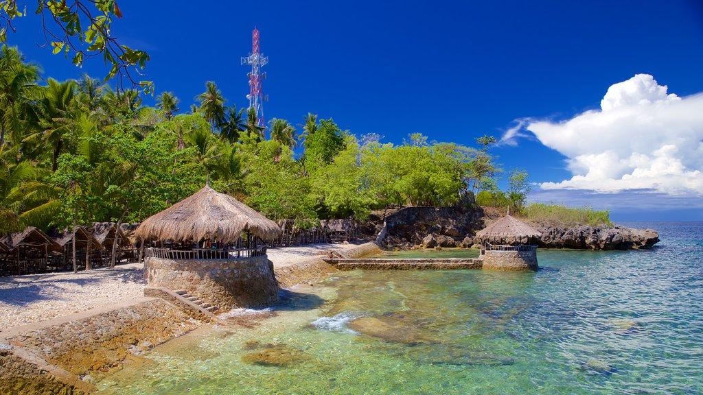 Cebu Island featuring general coastal views and tropical scenes
