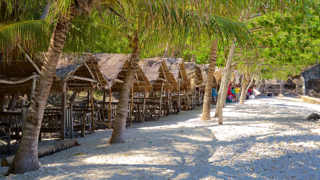Cebu Island featuring tropical scenes and a pebble beach