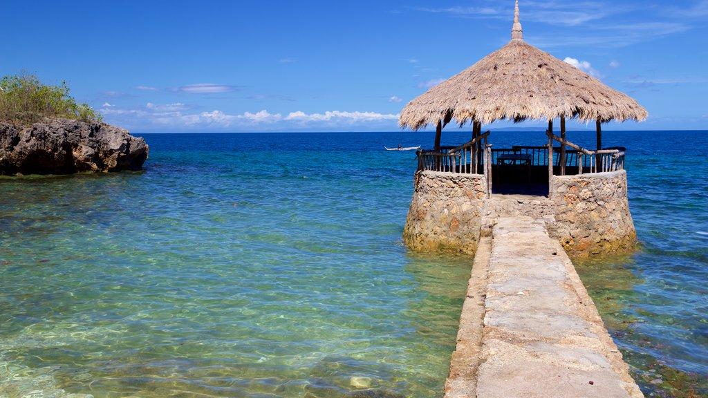 Cebu Island which includes general coastal views