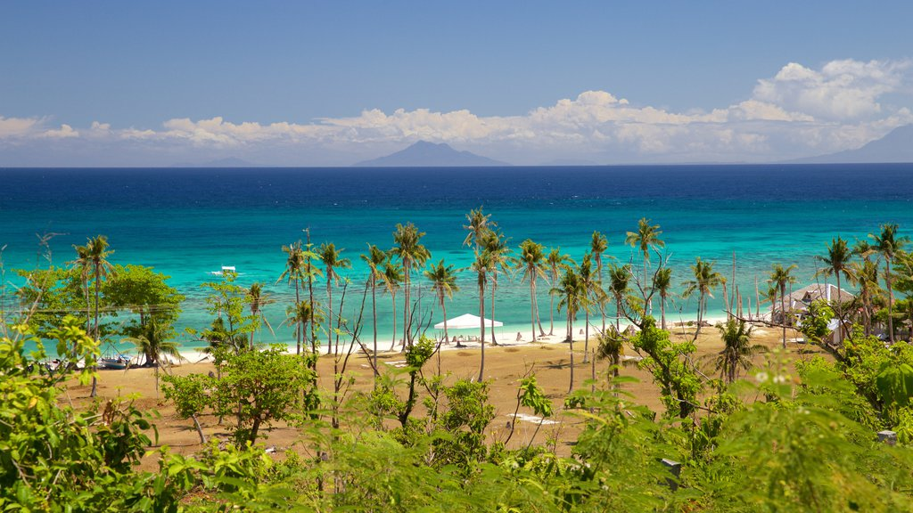 Guimbitayan Beach which includes general coastal views and tropical scenes