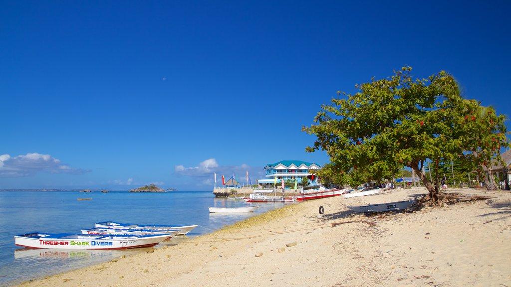 Bounty Beach which includes a beach and general coastal views