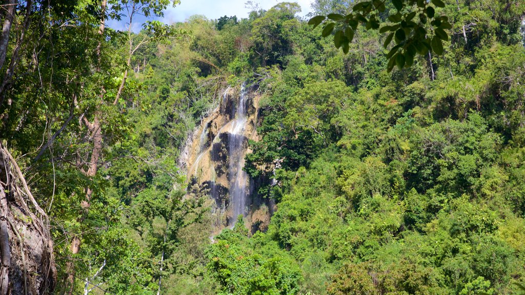 Tumalog Falls which includes a waterfall and tranquil scenes