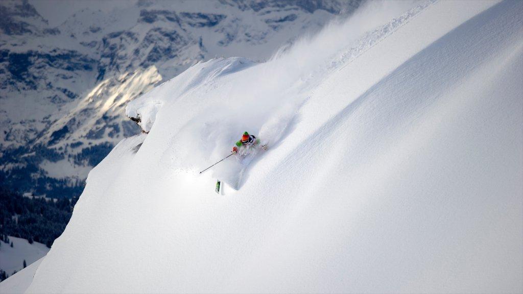 Estación de esquí Les Diablerets ofreciendo nieve, montañas y esquiar en la nieve
