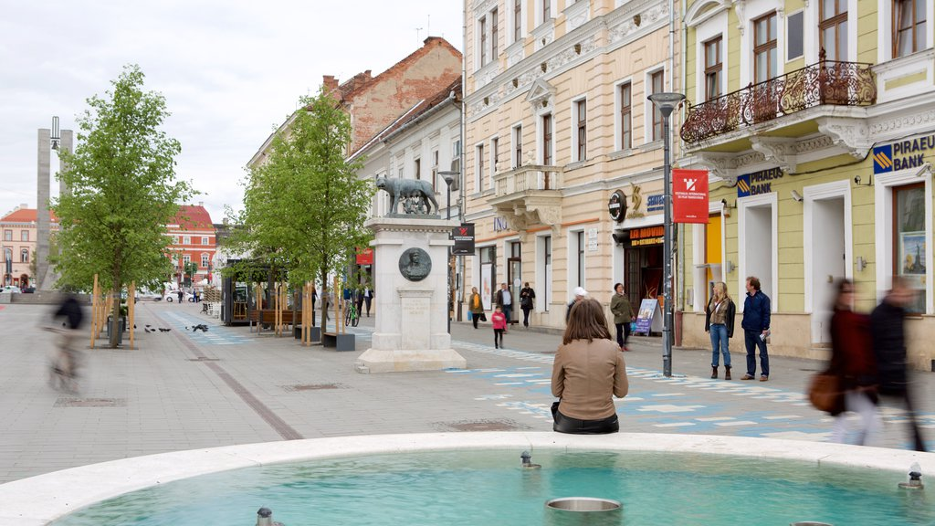 Cluj-Napoca featuring a square or plaza