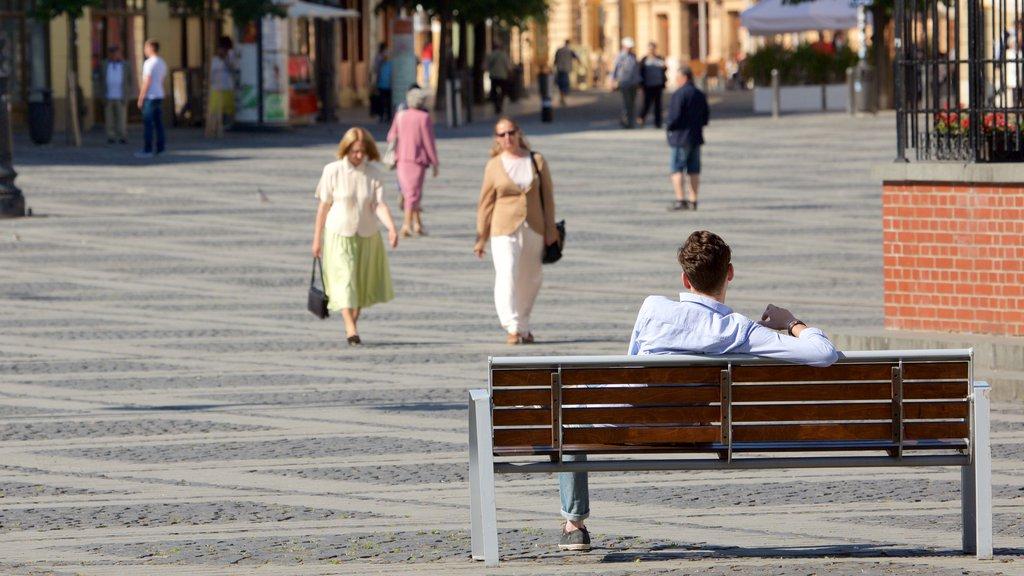 Piata Mare which includes a square or plaza