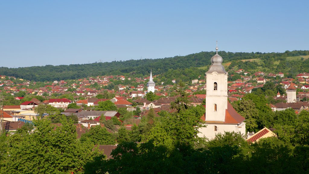Hunedoara which includes a small town or village and landscape views