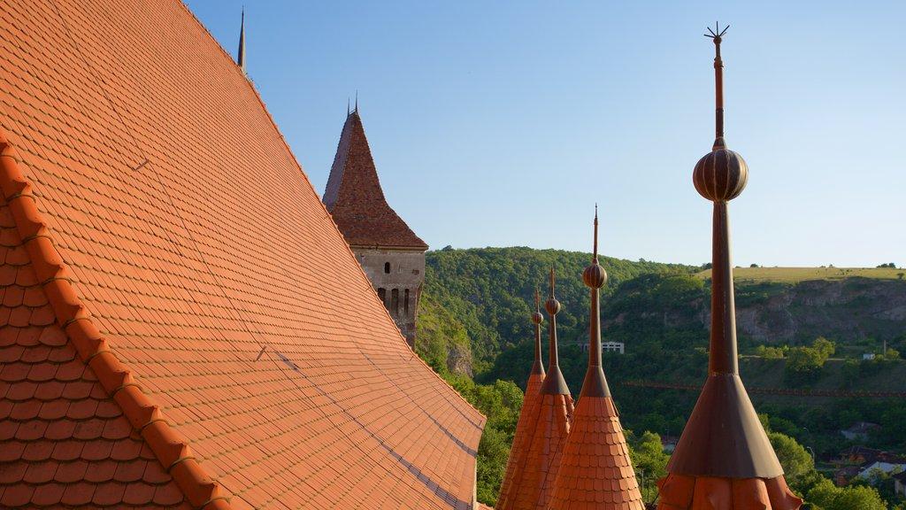 Hunedoara Castle showing heritage architecture