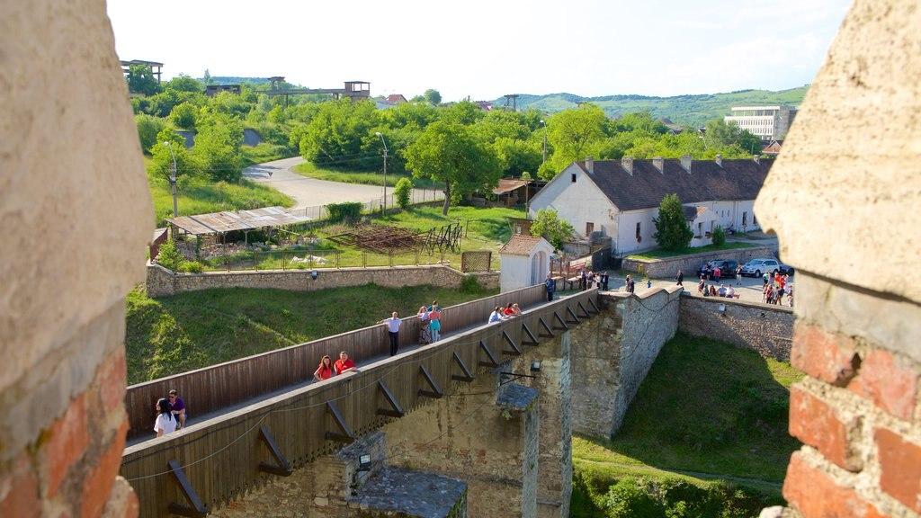 Hunedoara Castle which includes a bridge