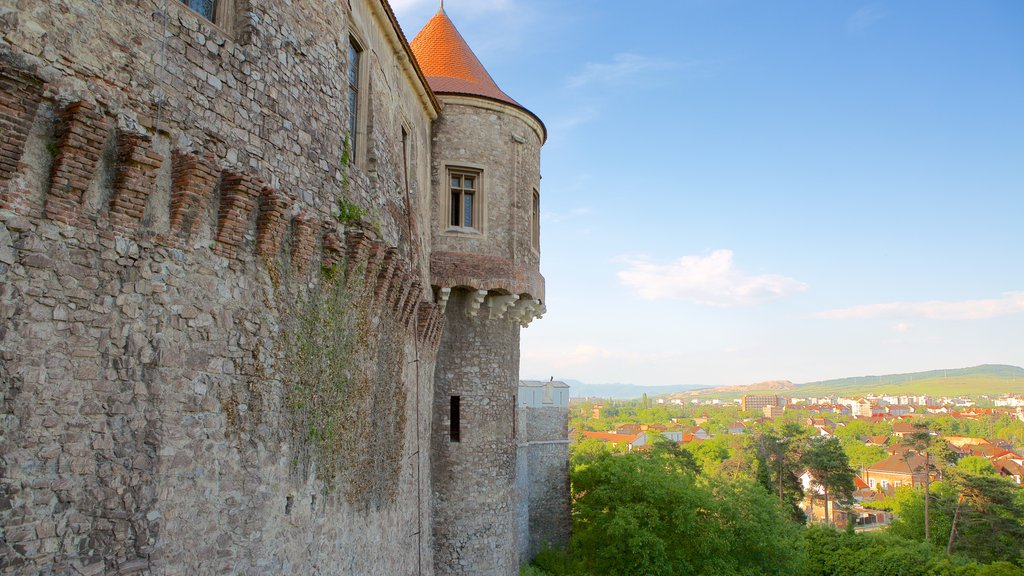 Hunedoara Castle which includes heritage architecture