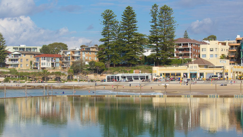 Cronulla Beach featuring general coastal views
