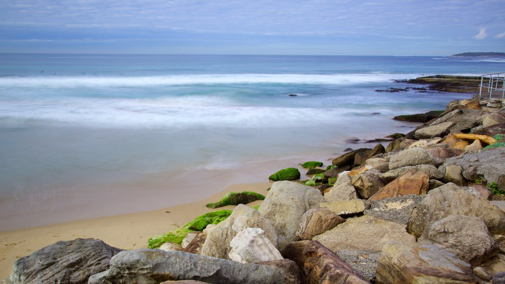 Cronulla Beach featuring rugged coastline