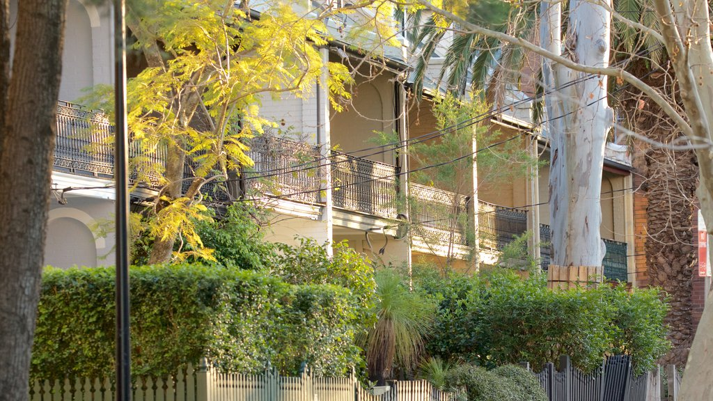 Surry Hills showing a house
