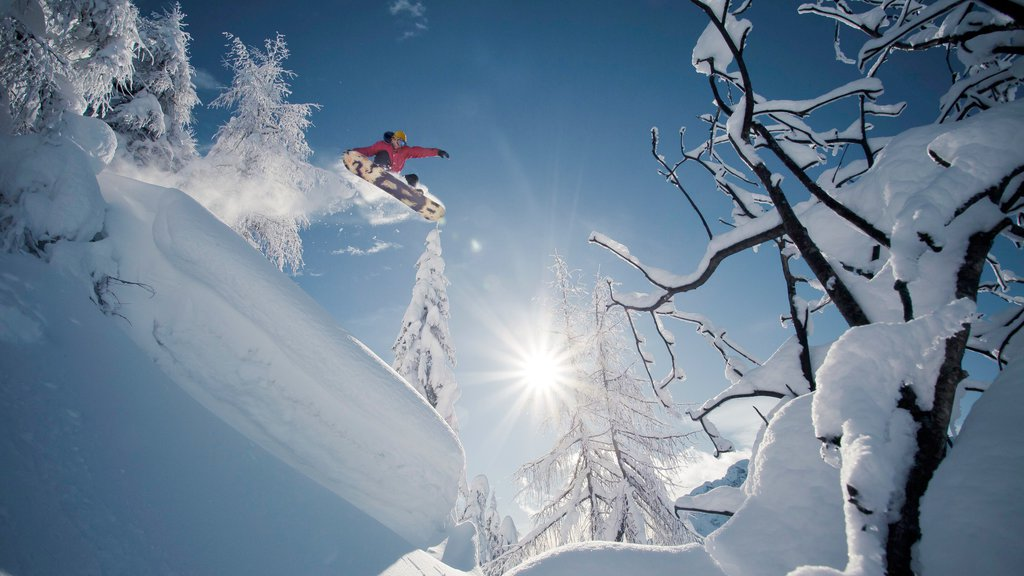Nassfeld-Hermagor Skiing which includes snow and snow boarding