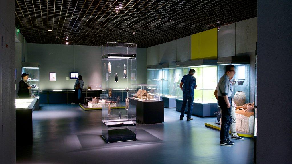 Aquitaine Museum featuring interior views