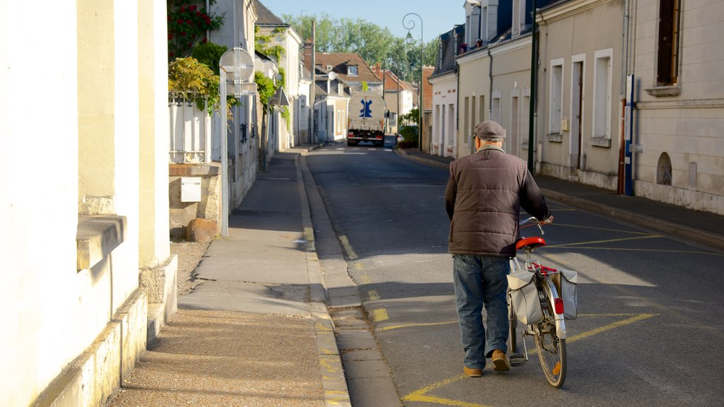 Amboise showing cycling as well as an individual male
