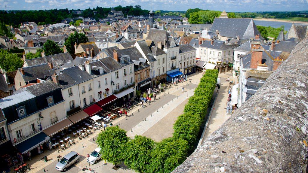 Amboise showing a small town or village