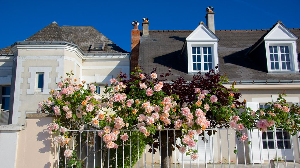 Amboise showing a house and flowers