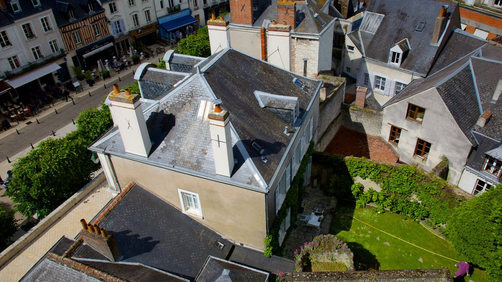 Amboise featuring a small town or village and a house