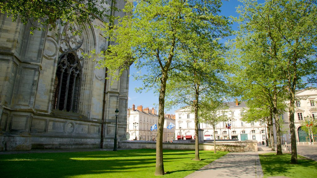 Orleans showing a park and a church or cathedral