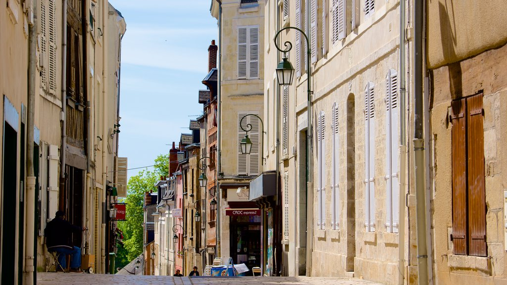 Orleans featuring street scenes, heritage elements and a city