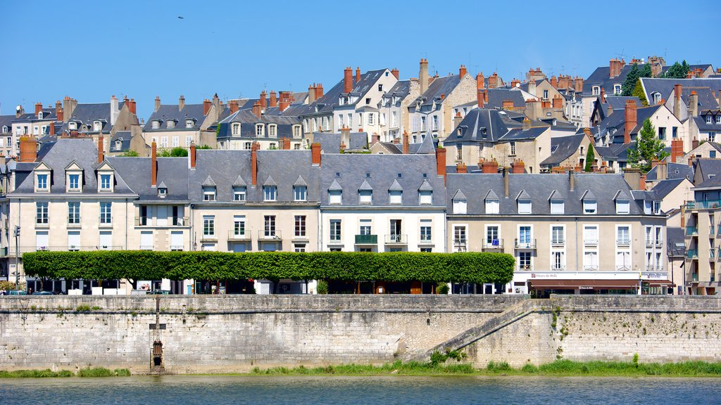 Blois which includes heritage elements and a city