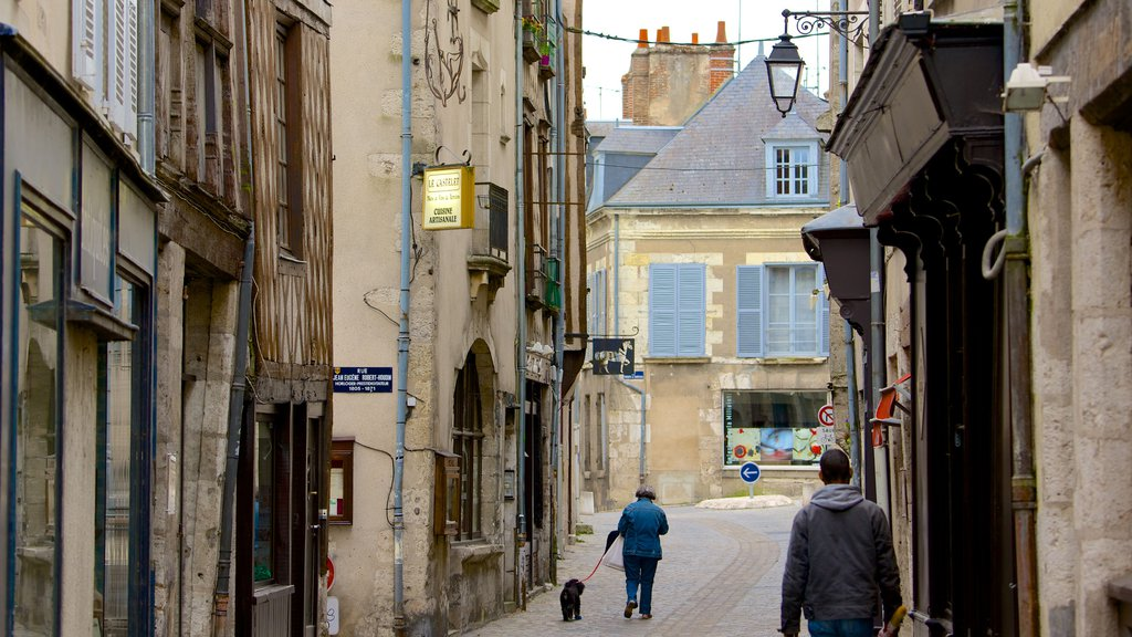 Blois which includes heritage elements and street scenes