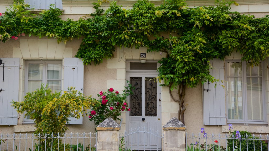 Chaumont-sur-Loire featuring flowers and a house