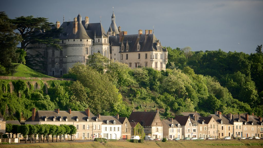 Chateau de Chaumont showing a small town or village, chateau or palace and tranquil scenes