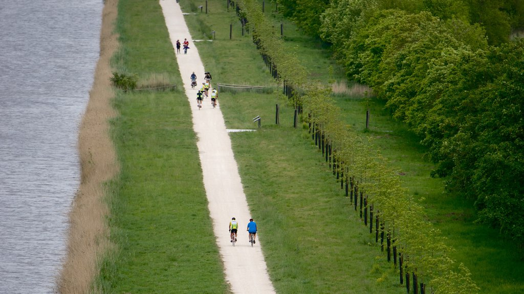 Chateau de Chambord showing a park and cycling